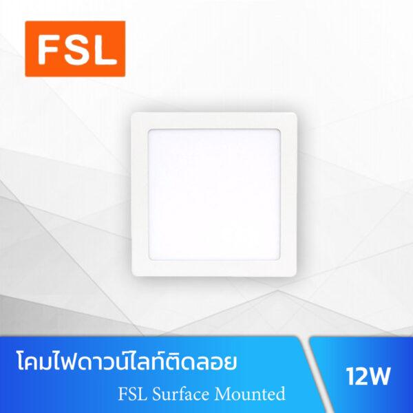 FSL Surface Mounted 12W